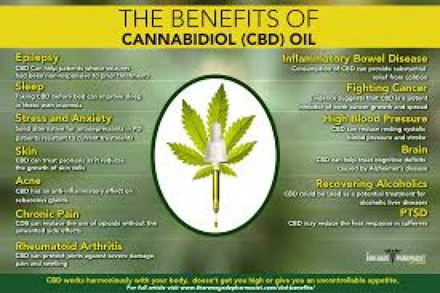 The Effects, Benefits, and Uses of CBD Oil in Pain Management