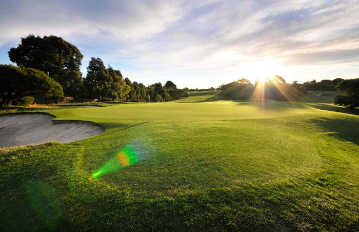 golf-green.jpg